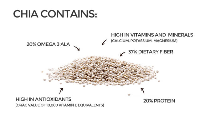 the-benefits-of-chia-seeds